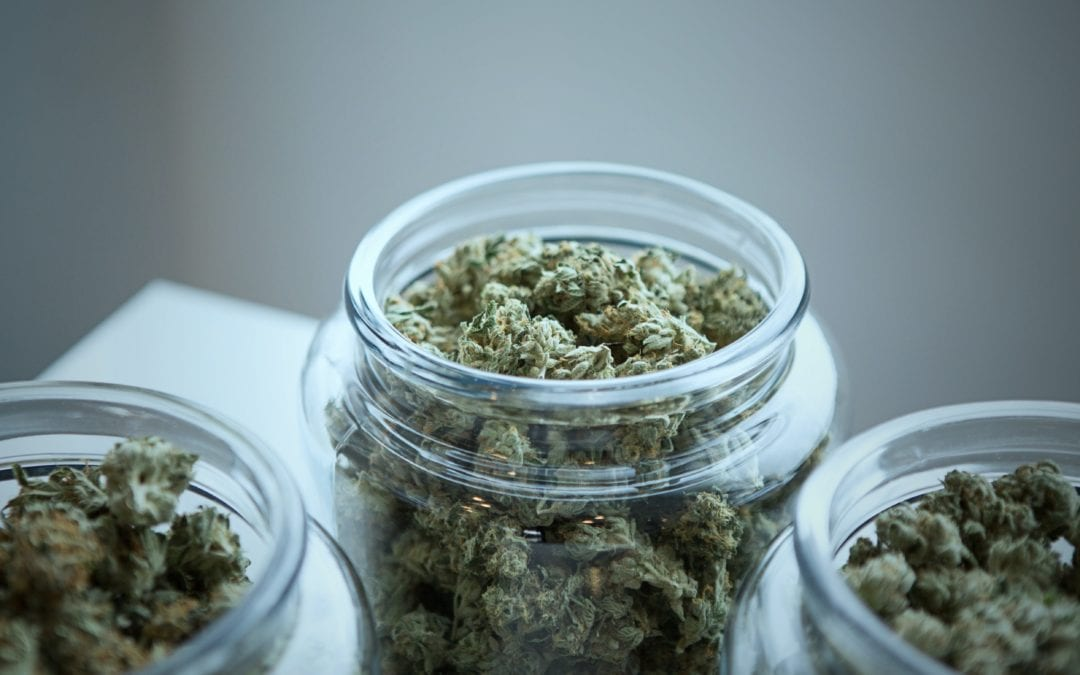 How Beneficial is Malta's First Licensed Medicinal Cannabis Producer?